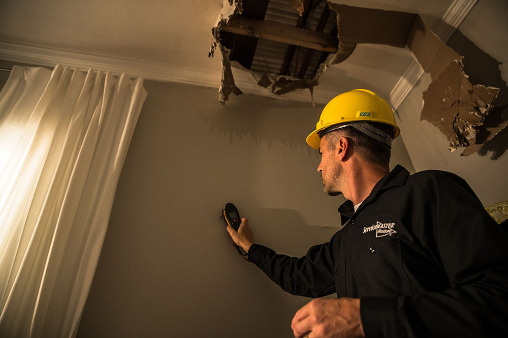 Why Hire a Professional Water Damage Restoration Company?